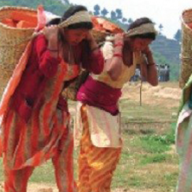 Nepal: an assessment on Food Security